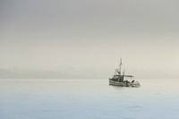 Fishing Boat NZ